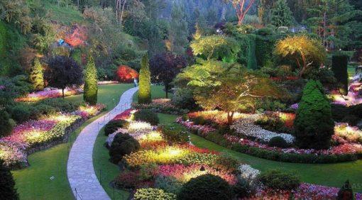 Интерфлора: выставка ландшафтной архитектуры и цветоводства